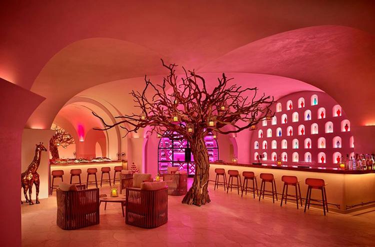 Arbol at Las Ventanas al Paraiso, a Rosewood Resort.